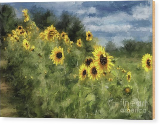 Wood Print featuring the photograph Sunflowers Bowing And Waving by Lois Bryan