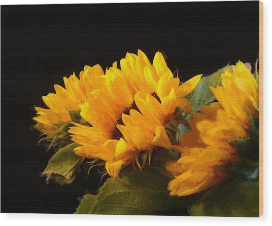 Sunflowers On A Black Background Wood Print