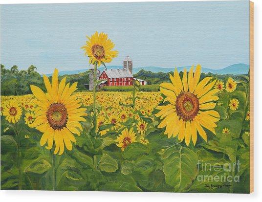 Sunflowers On Route 45 - Pennsylvania- Autumn Glow Wood Print