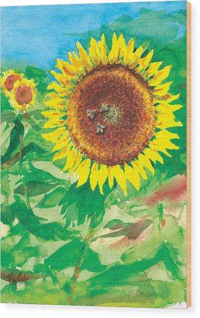 Sunflowers Wood Print by Ray Cole