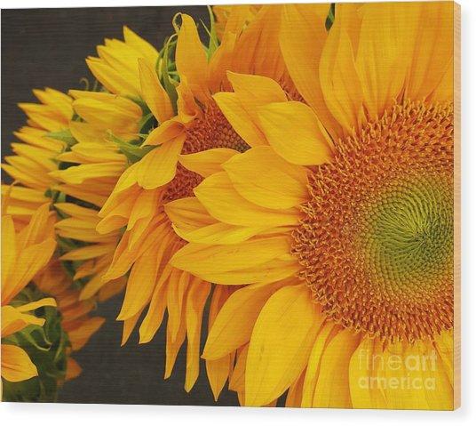 Sunflowers Train Wood Print