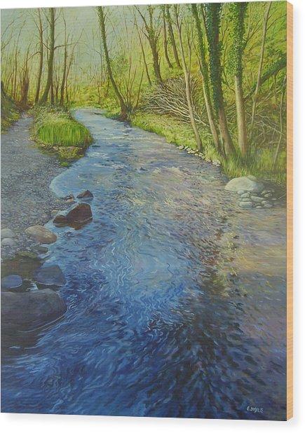 Sunlight In The Glen Wood Print by Eamon Doyle