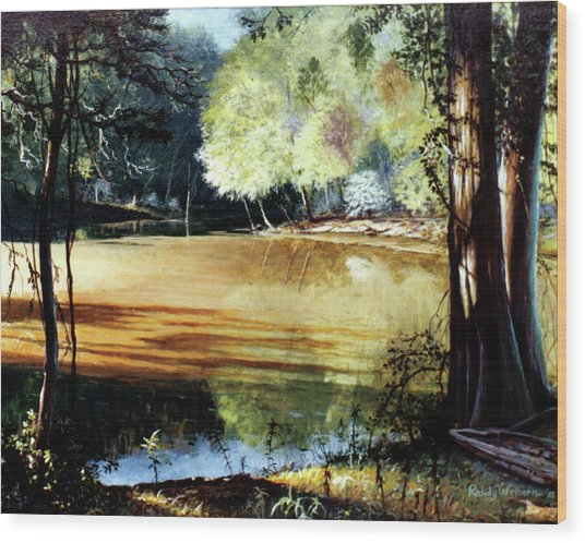 Sunlight On Village Creek Wood Print