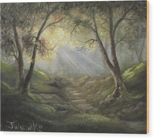 Sunlit Forrest  Wood Print