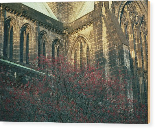 Sunlit Glasgow Cathedral Wood Print
