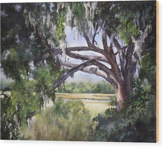 Sunlit Marsh Wood Print