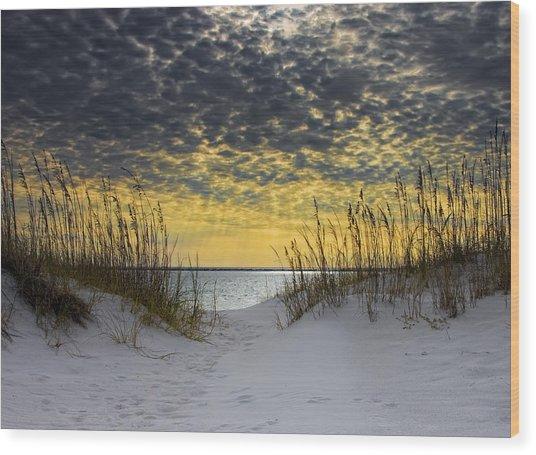 Sunlit Passage Wood Print