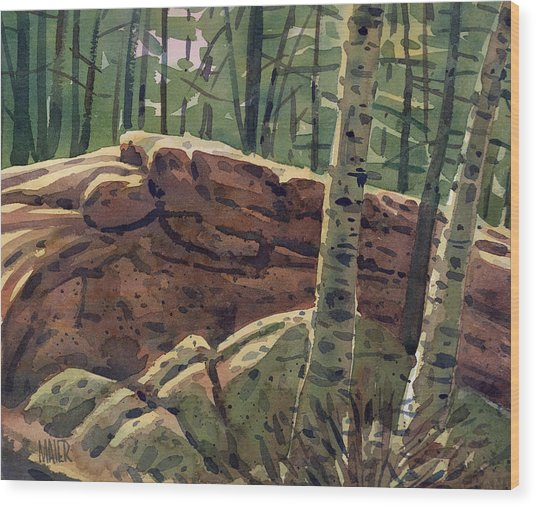 Sunlit Rocks Wood Print by Donald Maier