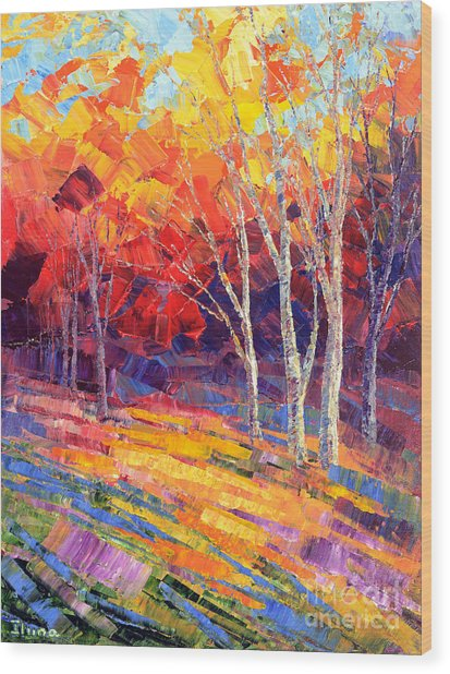 Sunlit Shadows Wood Print