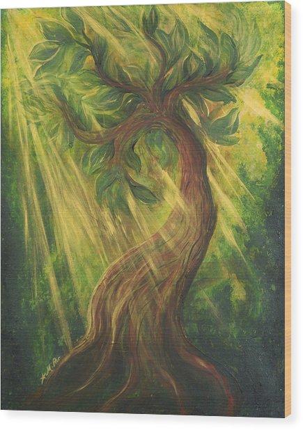 Sunlit Tree Wood Print