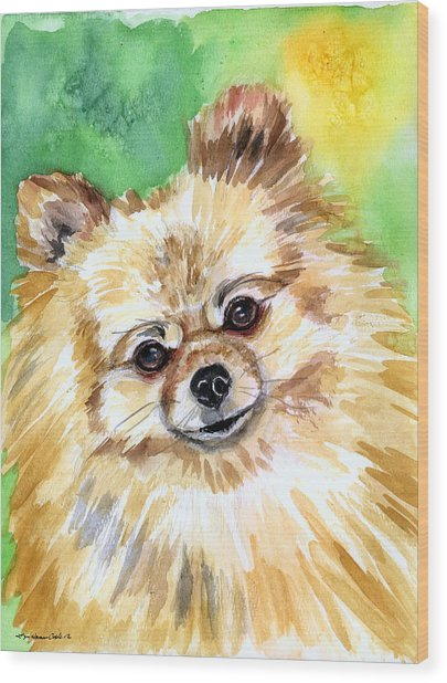 Sunny - Pomeranian Wood Print by Lyn Cook