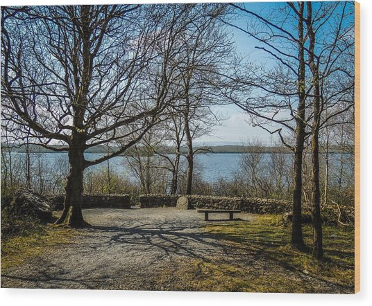 Sunny Afternoon At Lough Coole Wood Print