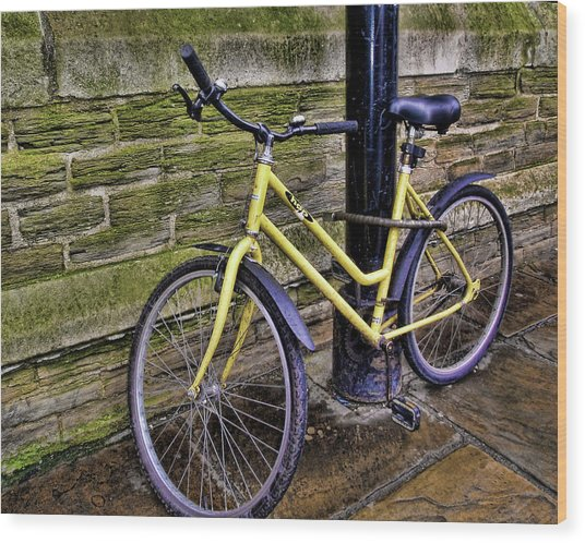 Sunny Cycle Wood Print by JAMART Photography