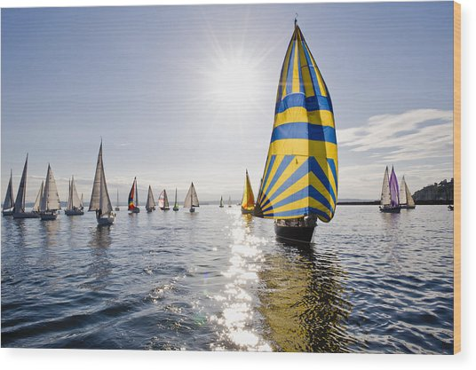 Sunny Day Sailing Wood Print by Tom Dowd