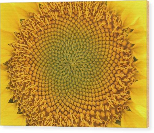 Sunny Swirl Wood Print