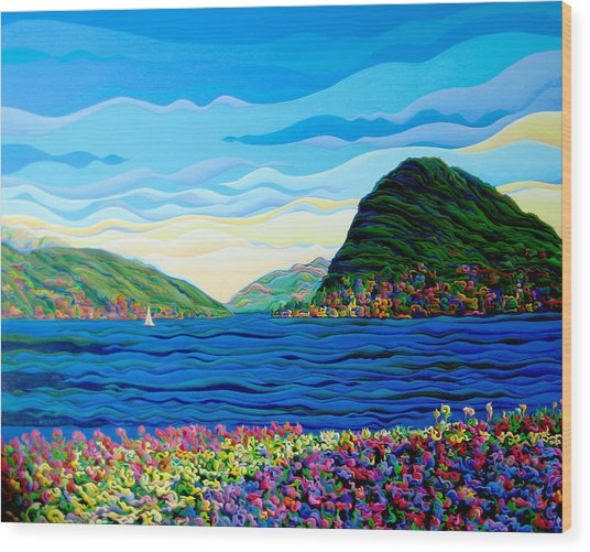 Sunny Swiss-scape Wood Print