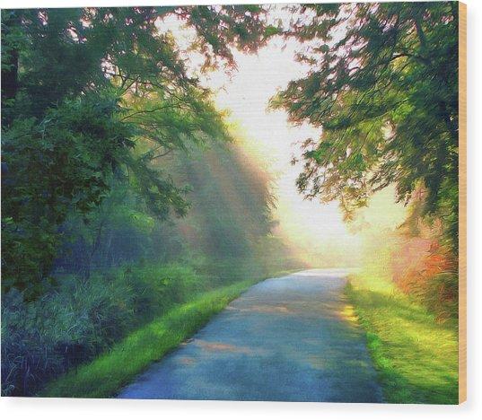 Sunny Trail Wood Print