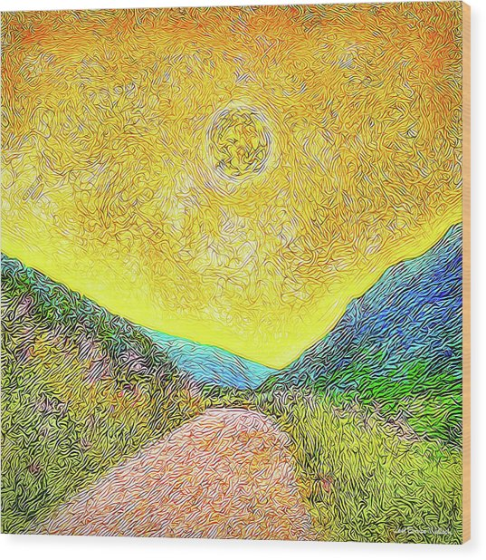 Sunny Trail - Marin California Wood Print