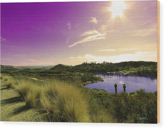 Sunny Valley Wood Print