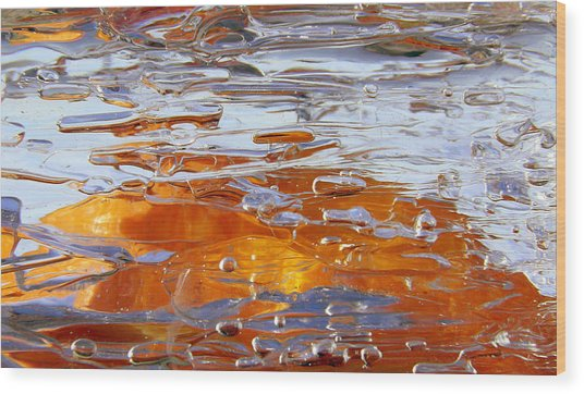 Sunny Water 1 Wood Print