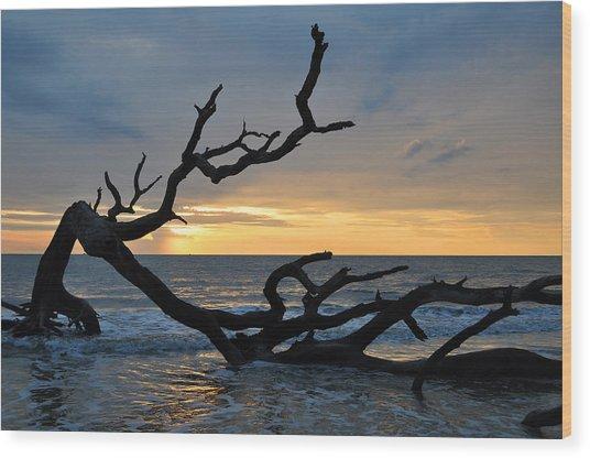 Sunrise At Driftwood Beach 1.2 Wood Print