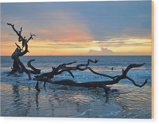 Sunrise At Driftwood Beach 1.4 Wood Print