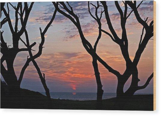Sunrise At Fort Fisher Wood Print by Paul Boroznoff