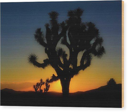 Sunrise At Joshua Wood Print
