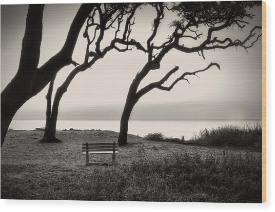 Sunrise At The Bench In Black And White Wood Print
