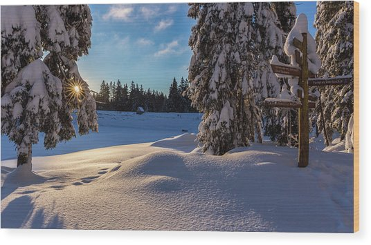 sunrise at the Oderteich, Harz Wood Print