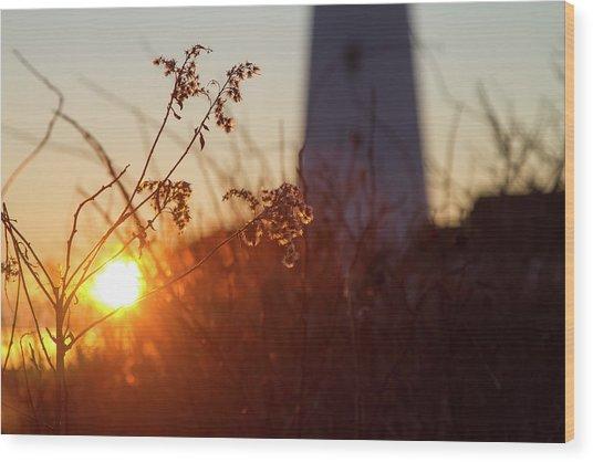Sunrise Backlight Wood Print