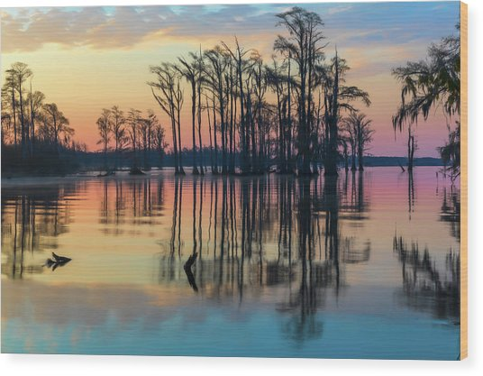Wood Print featuring the photograph Sunrise, Bald Cypress Of Nc  by Cindy Lark Hartman