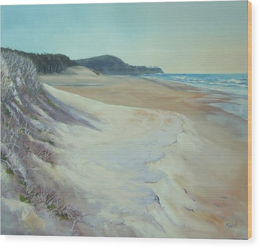 Sunrise Beach And Lions Head Noosa Heads Queensland Wood Print