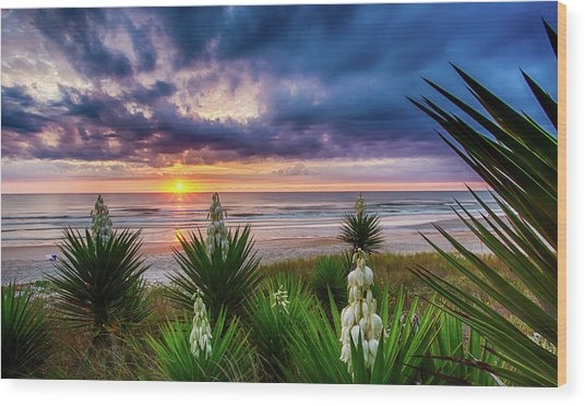 Sunrise Blooms Wood Print