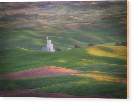 Sunrise From Steptoe Butte. Wood Print