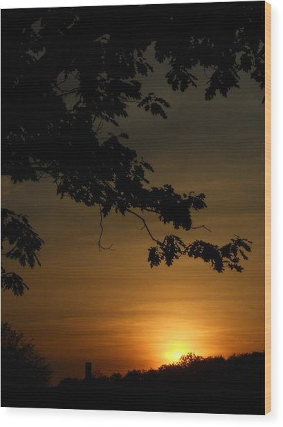 Sunrise Gold Wood Print