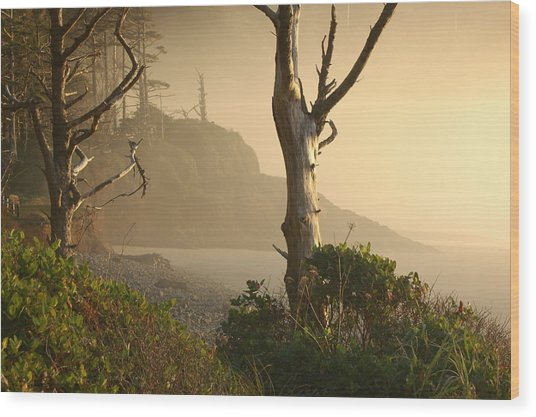 Sunrise Haze Wood Print by Lori Mellen-Pagliaro