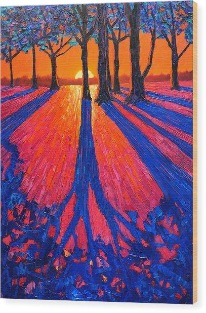 Sunrise In Glory - Long Shadows Of Trees At Dawn Wood Print