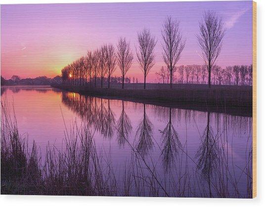 Sunrise In Holland Wood Print