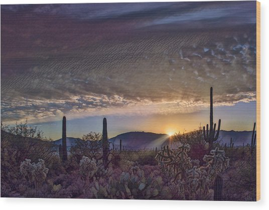 Wood Print featuring the photograph Sunrise In Sabino Canyon Remix by Dan McManus