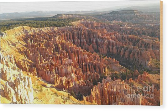 Sunrise In The Canyon Wood Print