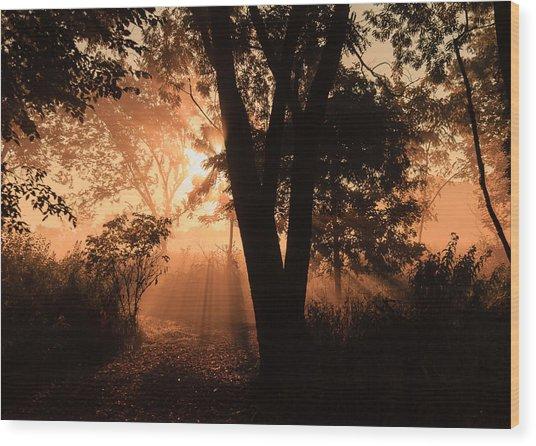 Sunrise In The Marsh 3 Wood Print