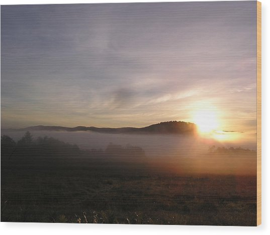 Sunrise Wood Print by Jashobeam Forest