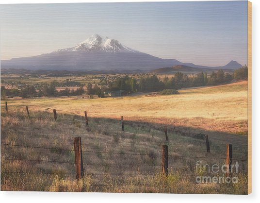 Sunrise Mount Shasta Wood Print