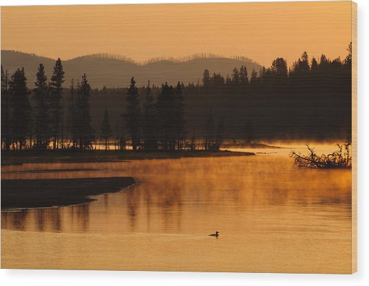 Sunrise Near Fishing Bridge In Yellowstone Wood Print
