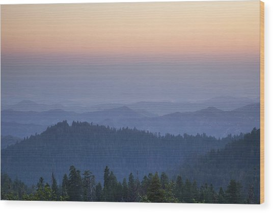 Sunrise Of Sequoia Wood Print by Rick Pham