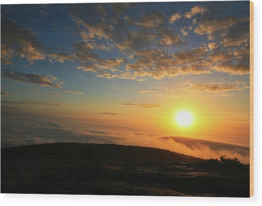 Sunrise On Cadillac Mountain Wood Print