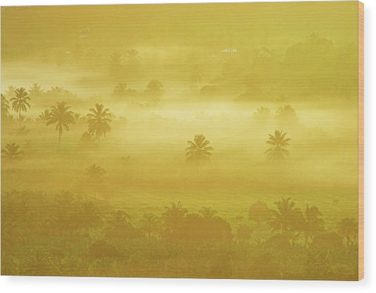 Sunrise On Mist In Roseau Valley- St Lucia Wood Print by Chester Williams