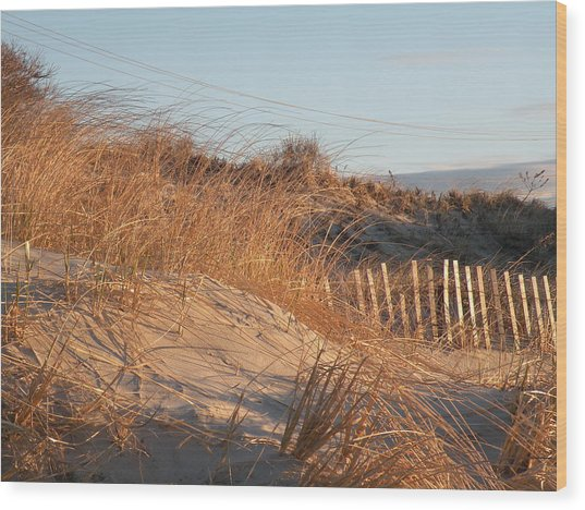 Sunrise On The Dunes Wood Print by Donald Cameron