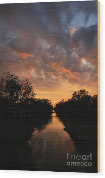 Sunrise On The Illinois Michigan Canal Wood Print